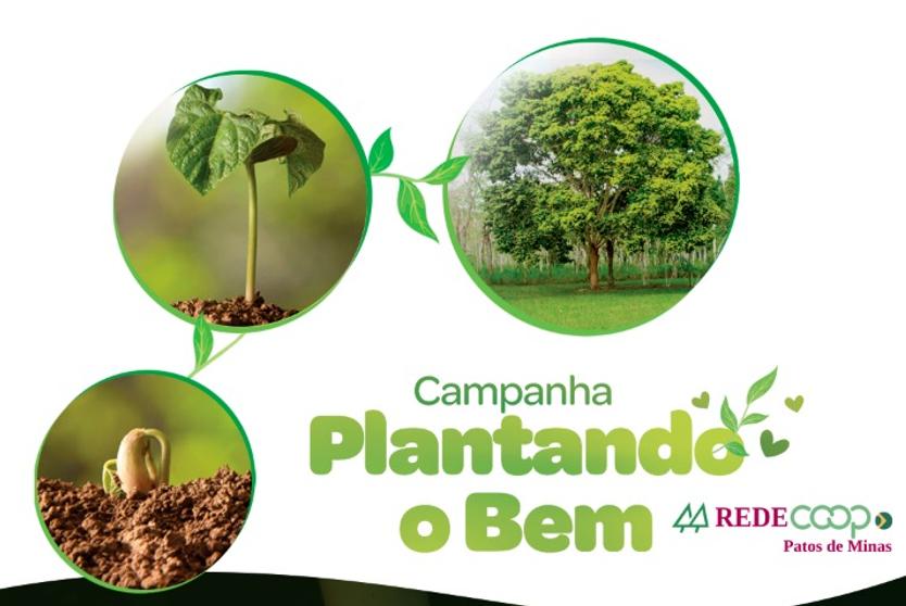 Campanha Plantando o Bem